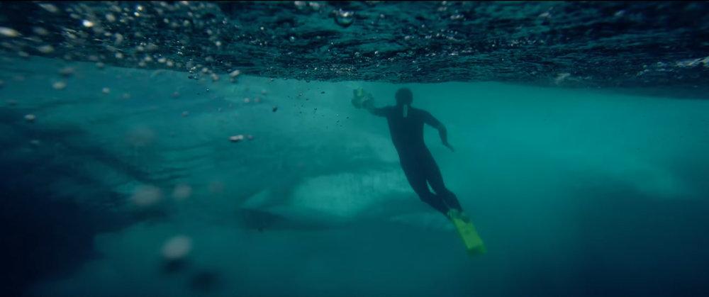 ryan underwater.jpg