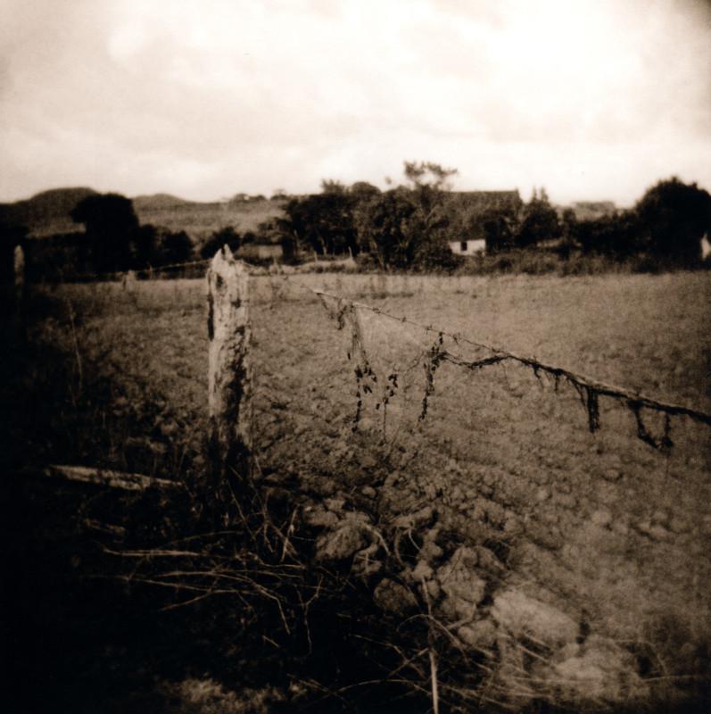 fencepost_welles.jpg