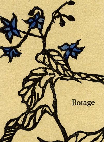 web_boragecard_back.jpg