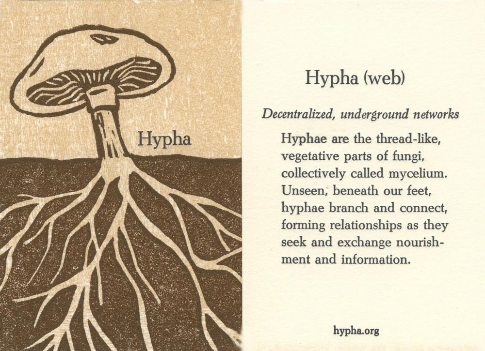 hyphawoodgraincard.jpg