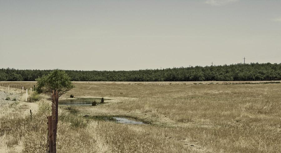 Malktime_Photography_Wild_West_4.jpg