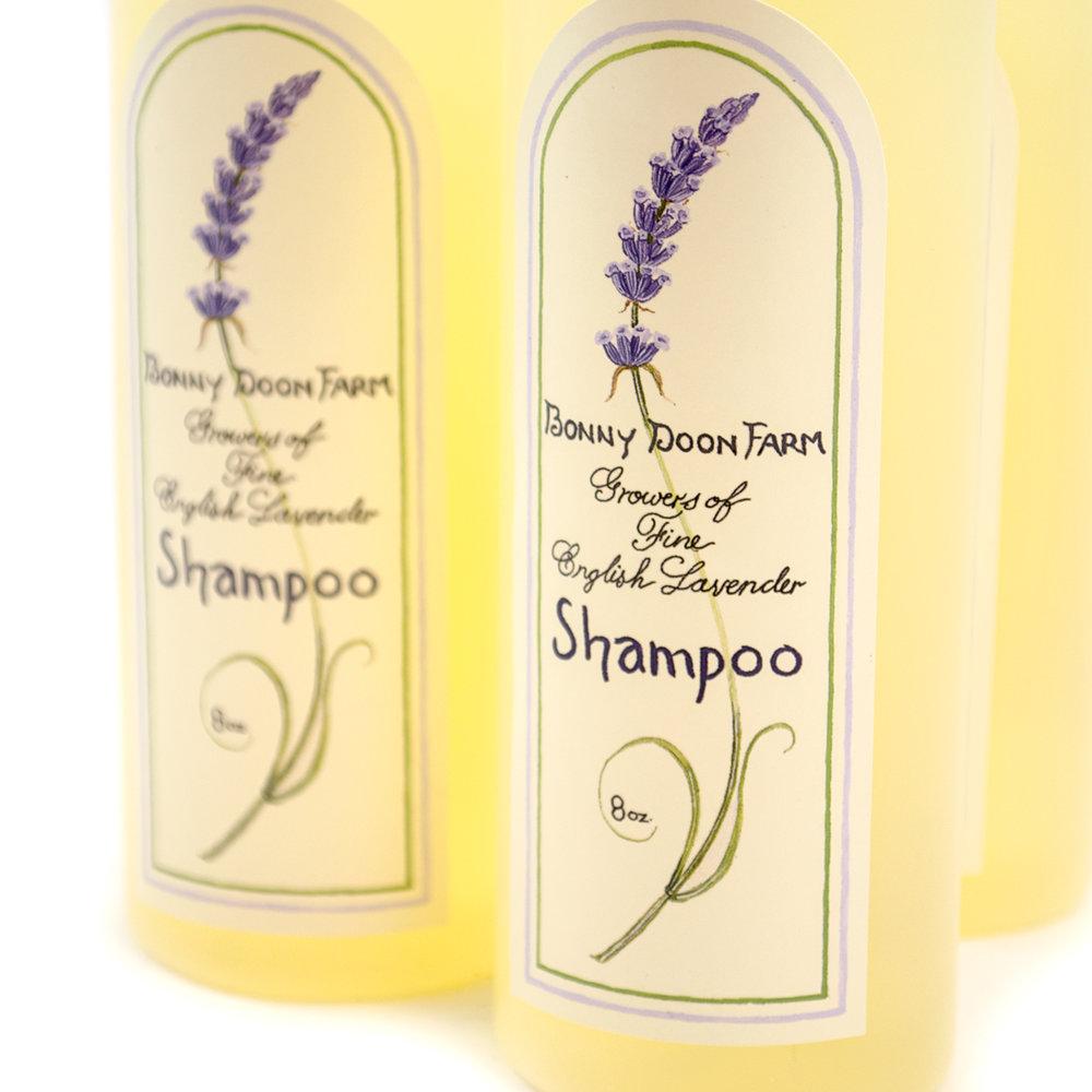 Bonny-Doon-Shampoo-4.jpg
