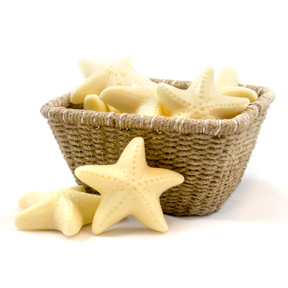 Starfish-Soap-1.jpg
