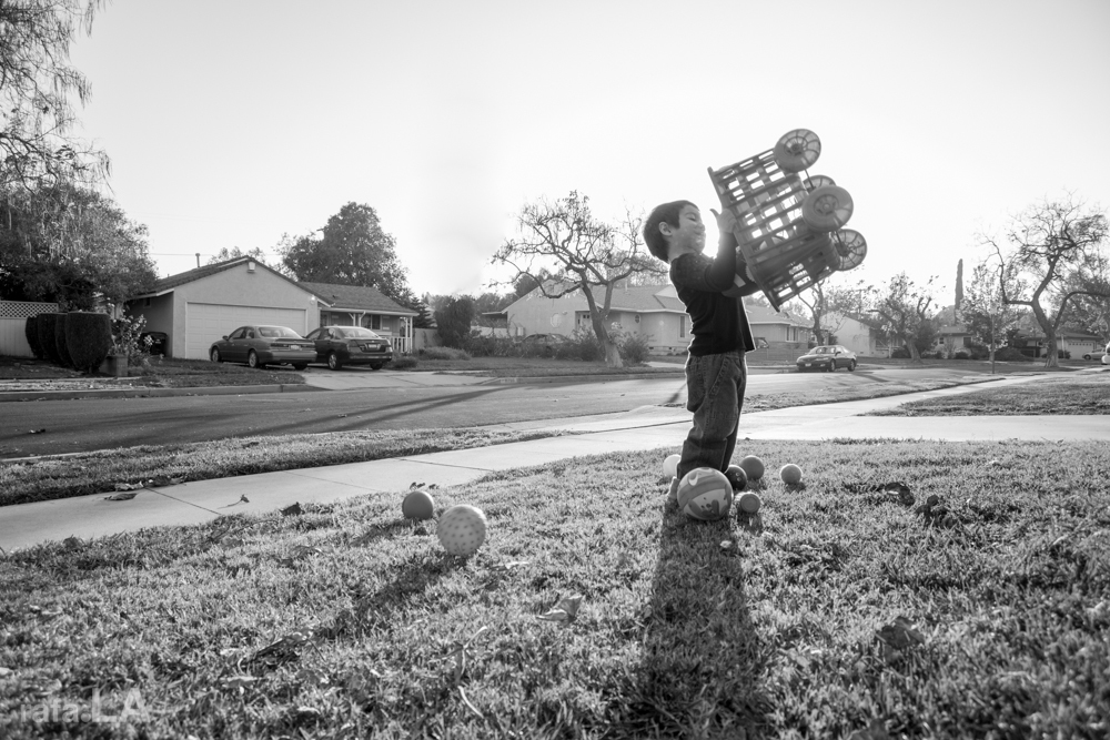 A Boy and His Basket.  November 10, 2013 - Granada Hills, Los Angeles County