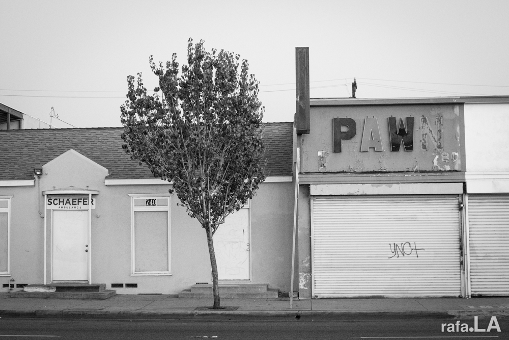 PAW  December 10, 2013 - Atlantic Blvd., East Los Angeles