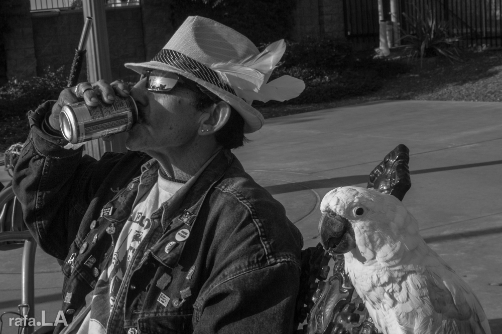 Feathered Friends.  December 13, 2013 - Mariachi Plaza, Boyle Heights