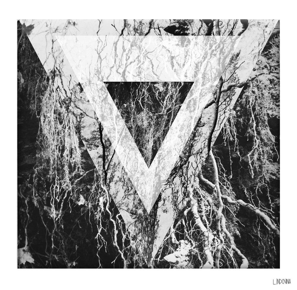 Monolith Forest Lauren Indovina 2013