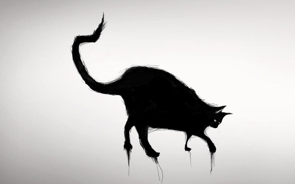 Cat 2 Lauren Indovina 2012