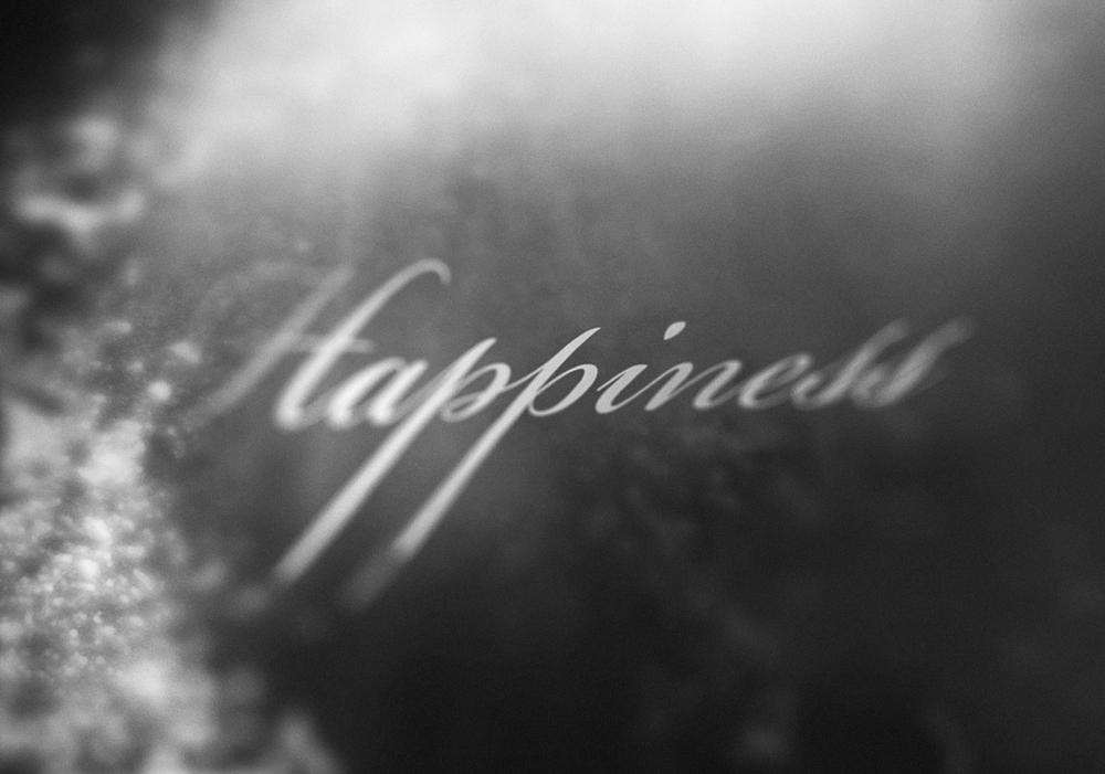 Happiness Lauren Indovina 2014