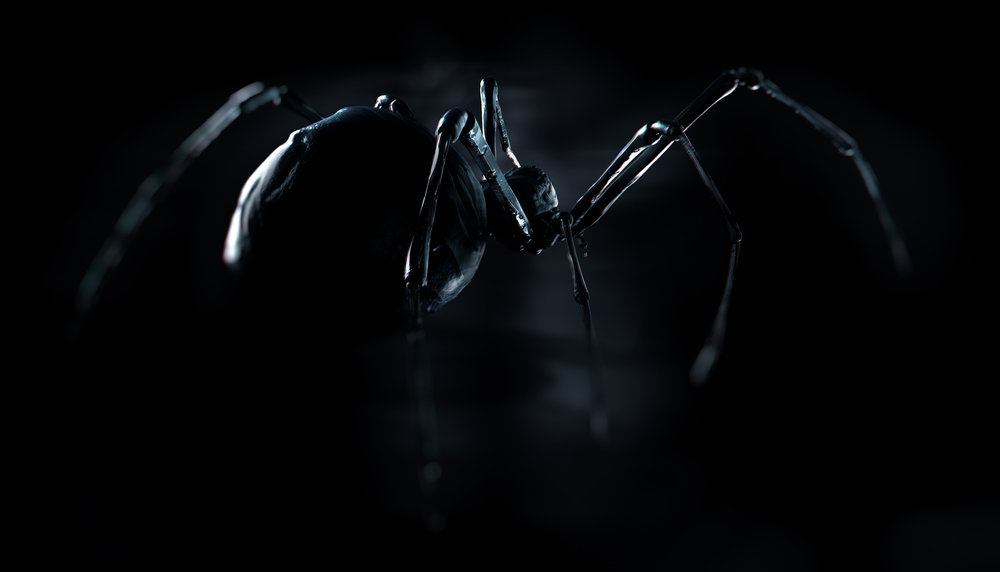Lauren-Indovina-Penny-Dreadful-Packaging-PSYOP-Spider.jpg