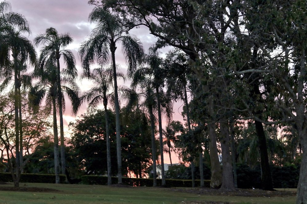 sunset at east brisbane