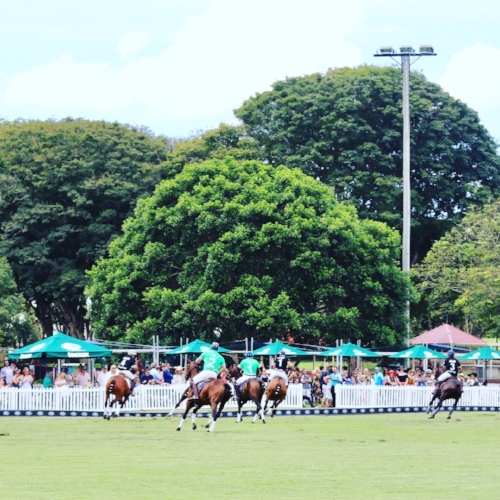 polo brisbane city