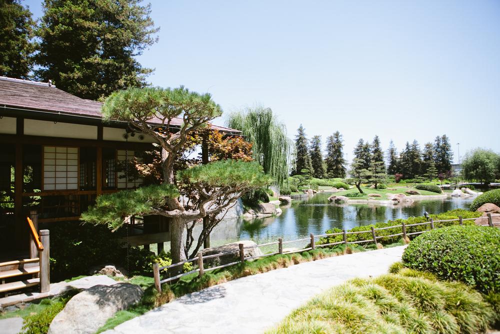 Long Beach Japanese Garden Wedding Sarah Banny