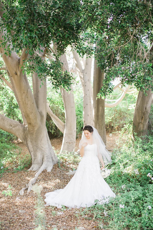 thisgirlnicole_jenny+sean_wedding-250.jpg