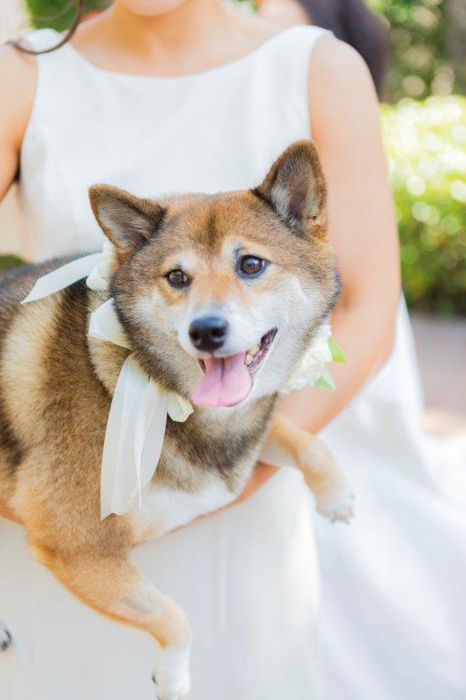 Bridal_Party_0037.jpg