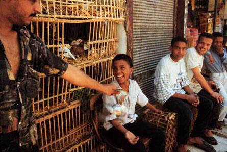 LShenouda_Egypt24.jpg