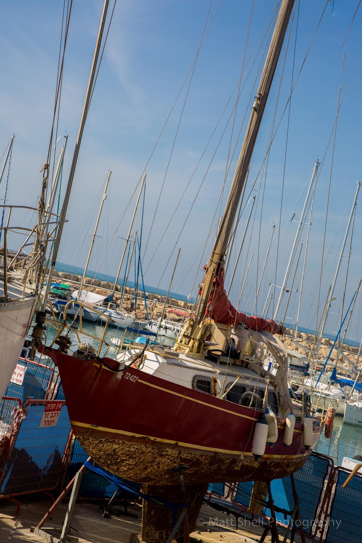 www.mattshellphoto.com-8038.jpg