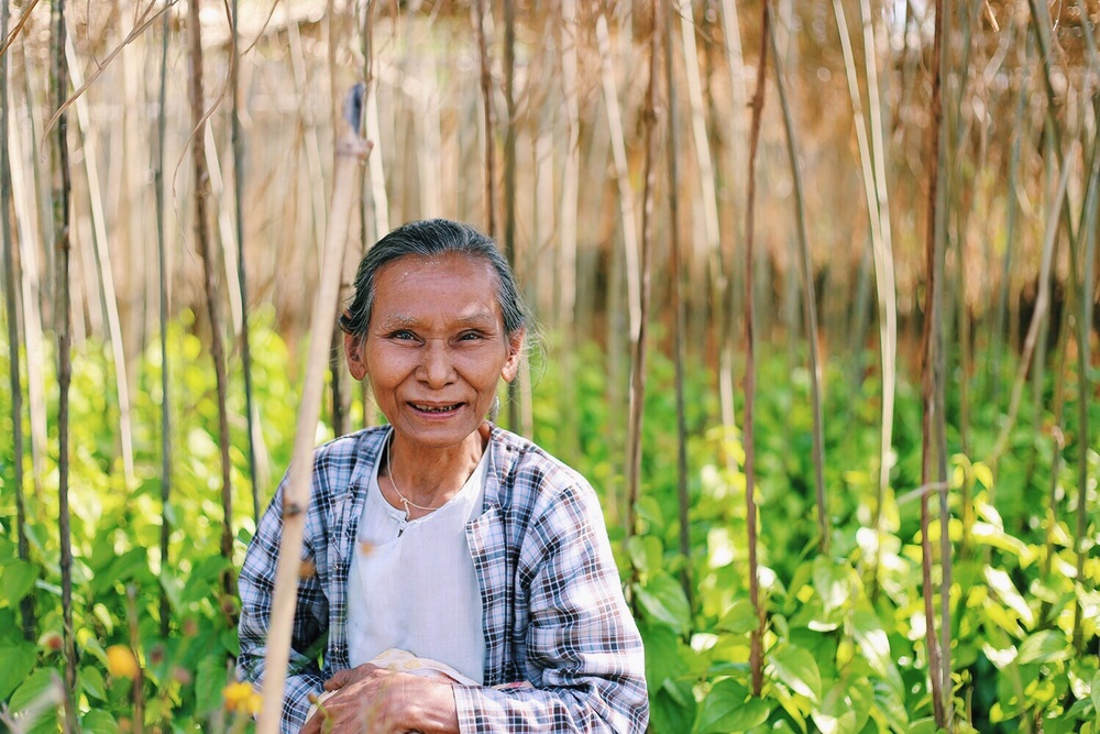 This woman, standing in a plot of betel leaves, worked on a farm that used Proximity Designs products in the Irrawaddy Delta.