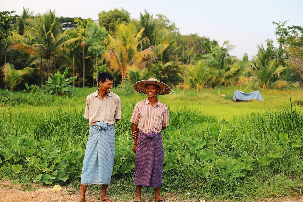 These small plot farmers in Myanmar's Irrawaddy Delta also used Proximity Designs Farm Advisory Services The farmer on the left, Tint Lwin, said that the use of proper pesticide usage and saltwater seed techniques that he learned from Proximity helped him increase his rice yields by 25% and cut his seed purchases in half.