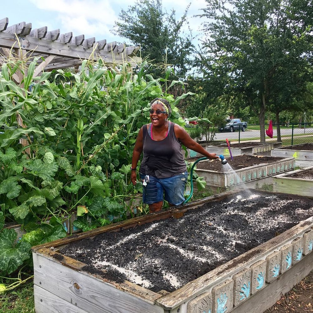 Nan Wilson is the Young Gardeners Program Director & a member of Galveston's Own Farmers Market Board of Directors.