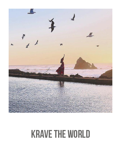KRAVE THE WORLD 1.jpg