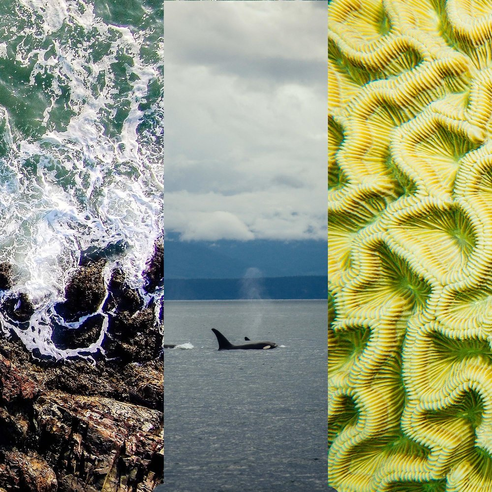 Three seas.jpg