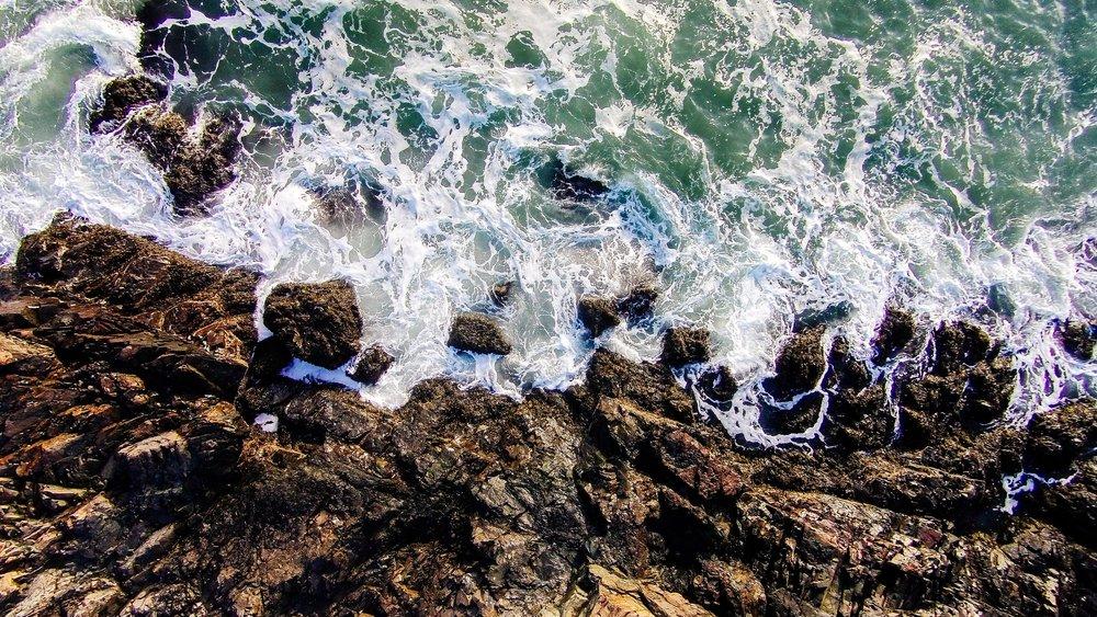 Nahant Coast