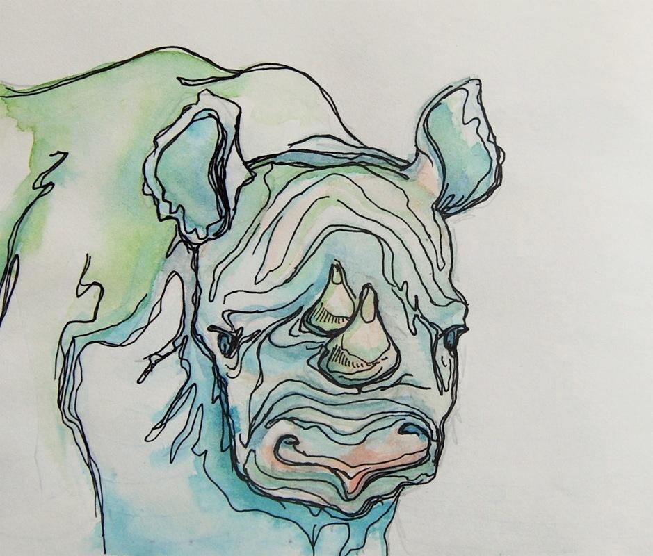 Sketchbook Nashorn.JPG