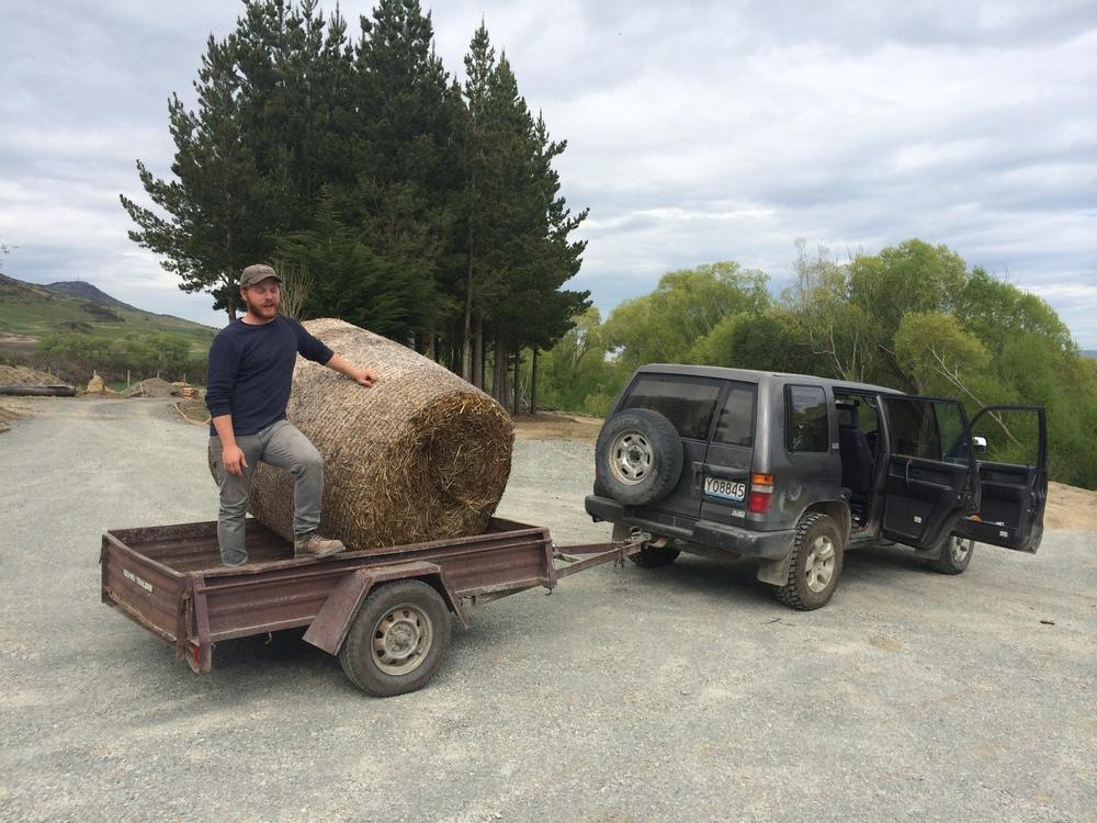 Max guarding his load