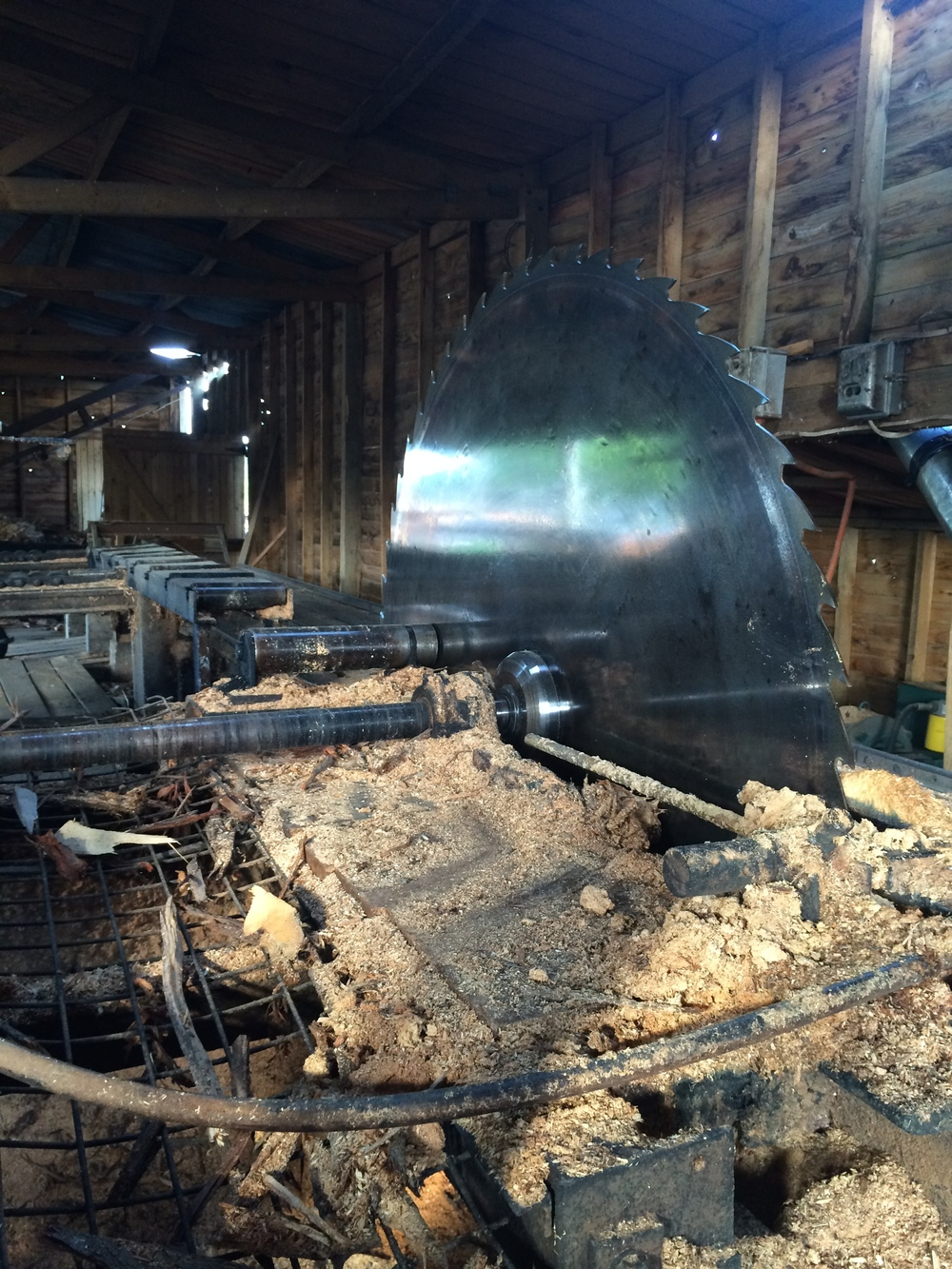We visited the functioning 1930s saw mill in town to pick up timber