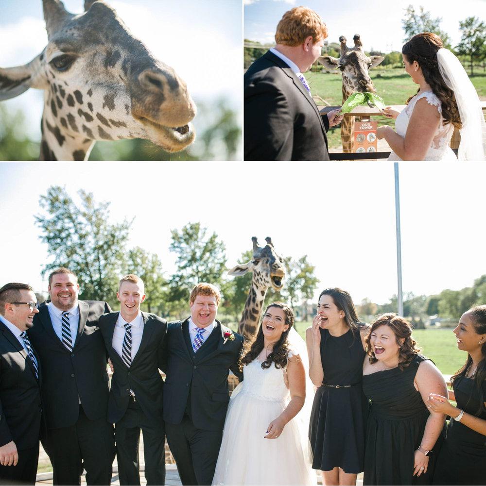 toledo-zoo-wedding-pictures-149.jpg