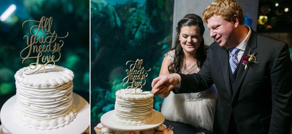 toledo-zoo-wedding-pictures-158.jpg
