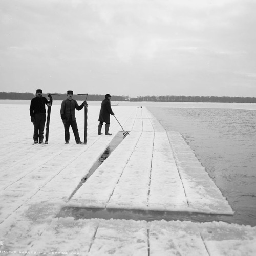"""The Lake The ice harvesting industry, singing lakes and """"The Endless Chain."""""""
