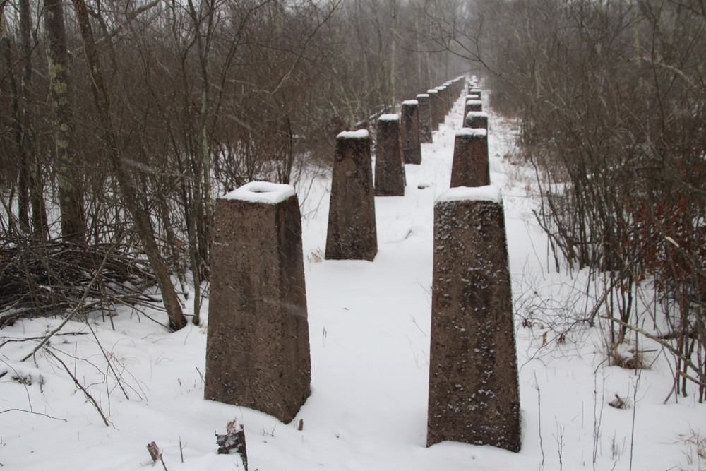 "Pillars that once supported the ""endless chain,"" a giant conveyor belt that brought ice from Bantam Lake to the Berkshire Ice Company ice house."