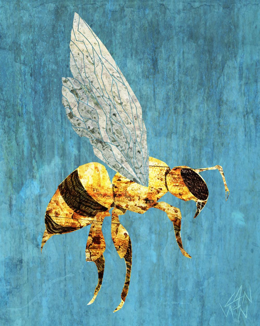 Honeybee 8x10.jpg