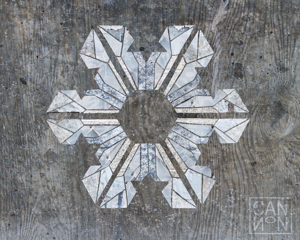 Snowflake 8x10.jpg