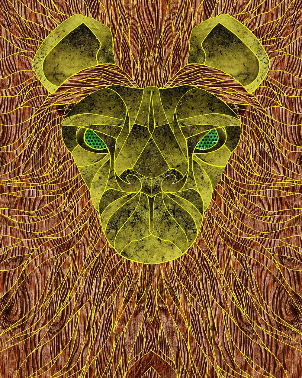 Lion 8x10.jpg