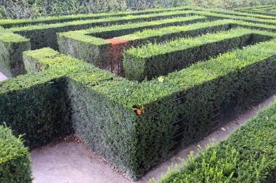 Garden StragegyiStock_000017868702Small.jpg