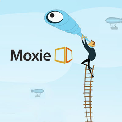 MOXIE INTERACTIVE 2013  DIGITAL TRENDS REPORT Website and Mobile