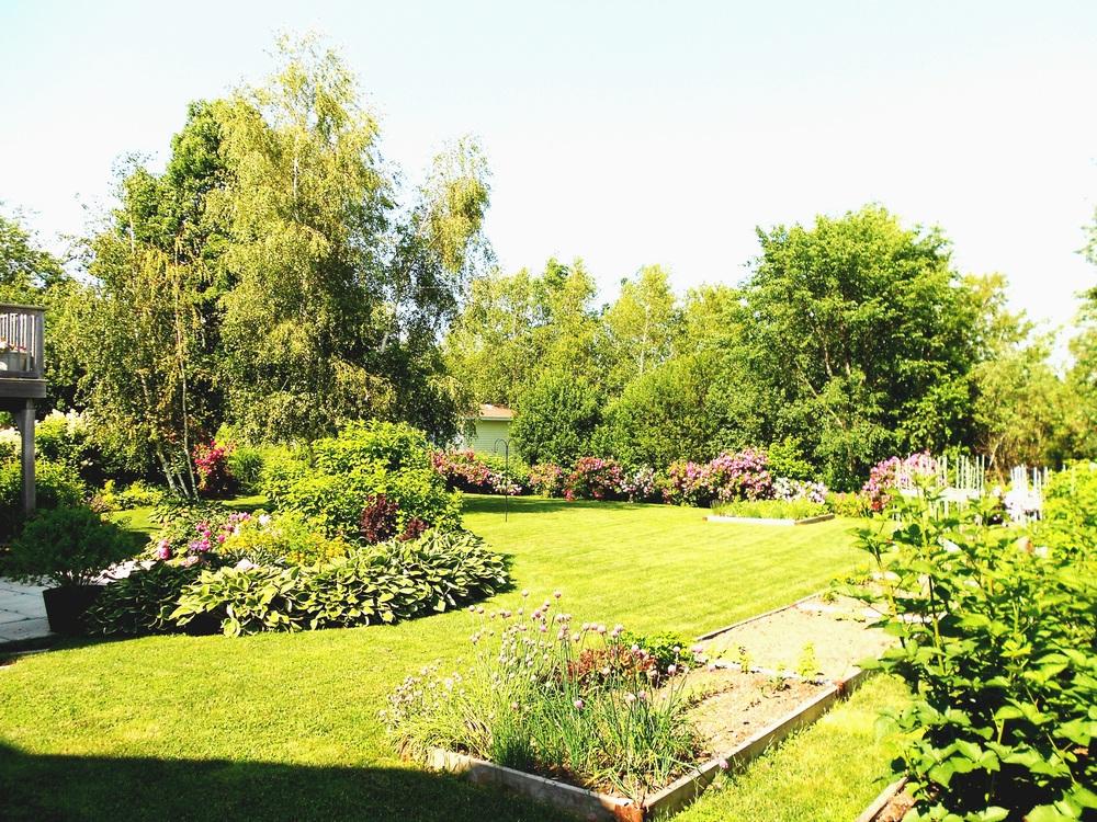 Landscape & Lawn photo 3 for website .JPG