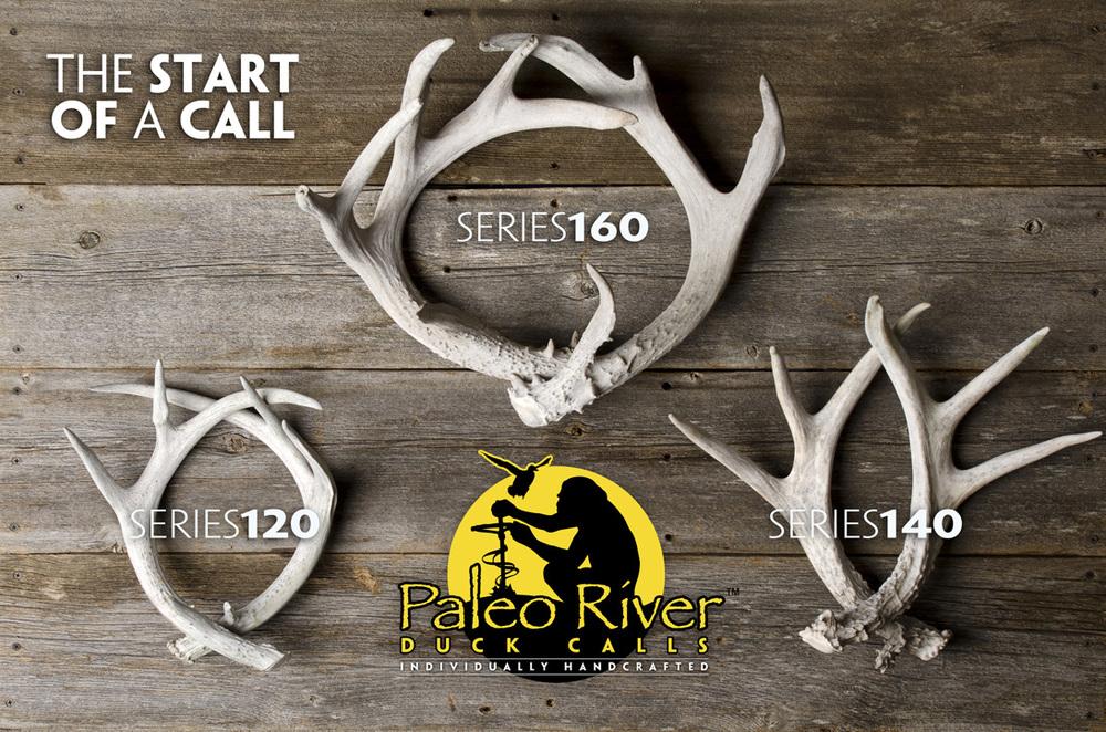 3 Antlers.jpg