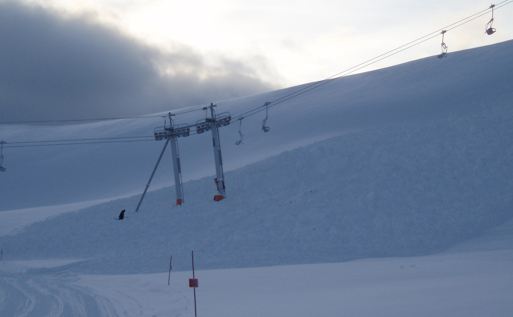 Avalanche Forces on Lift Towers