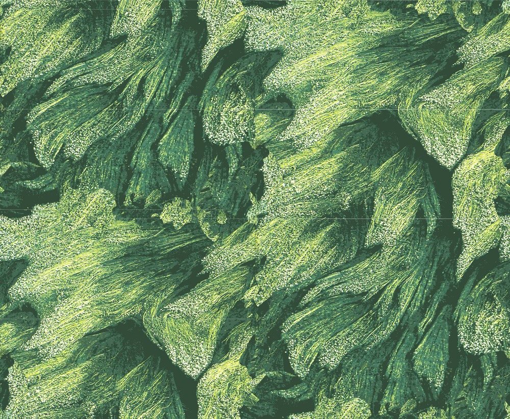 Sea Weed Printable TIle.jpg