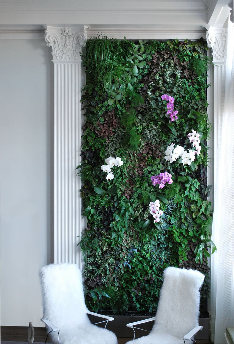 photo courtesy of Plant Wall Design