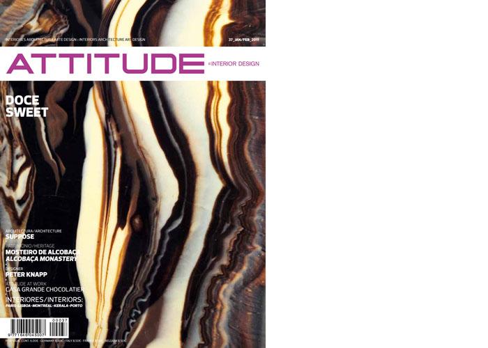 mag-attitude_1.jpg