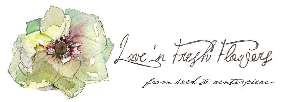 lovenfresh.JPG