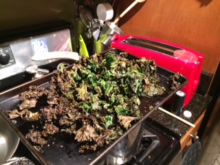 So long kale chips!