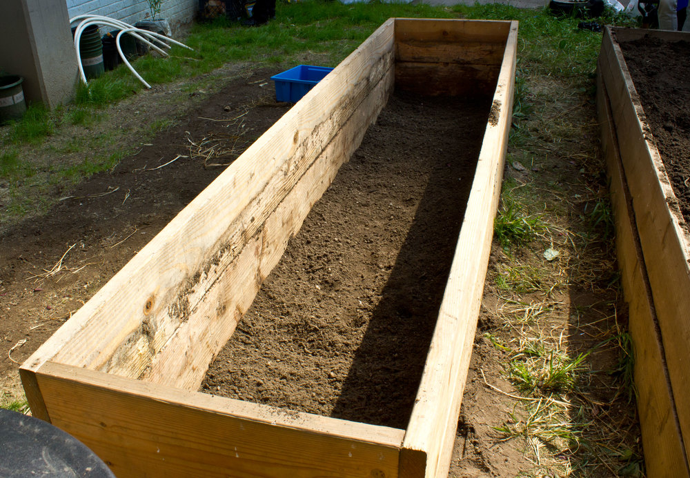 Then, we added 1 inch soil on top of the hardwire cloth to prevent damage to the plastic sheet we put on top.