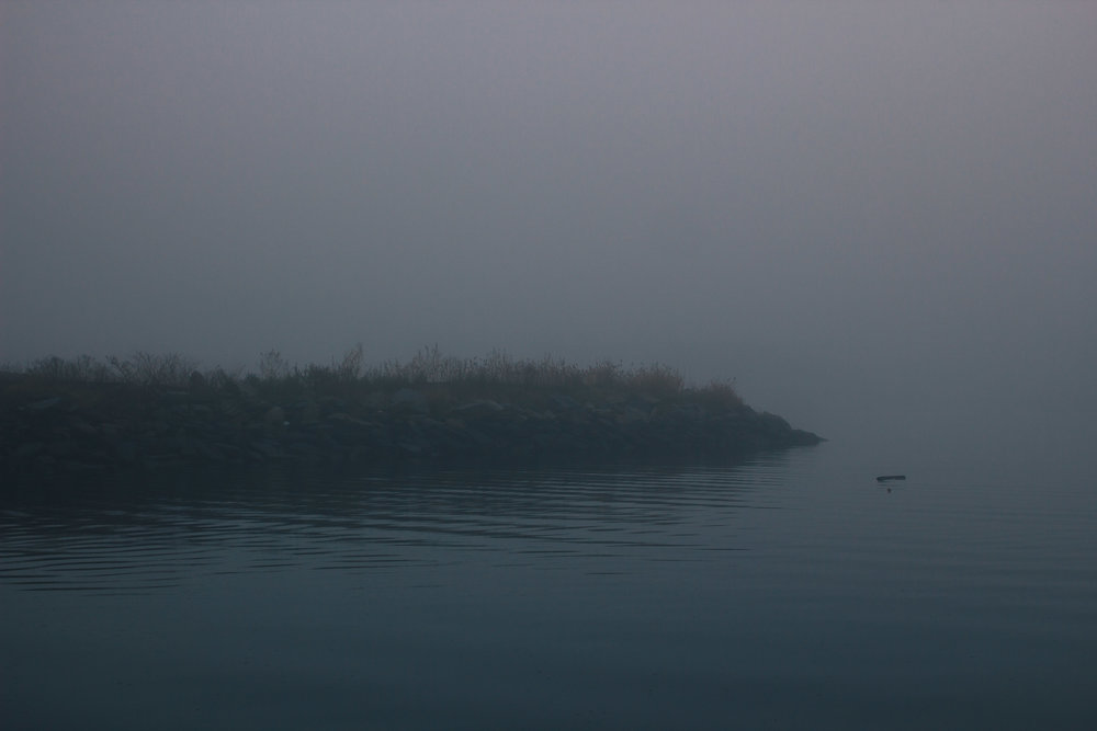 I loved it when the fog got so thick, the other side of the marina was no longer visible. Very spooky.