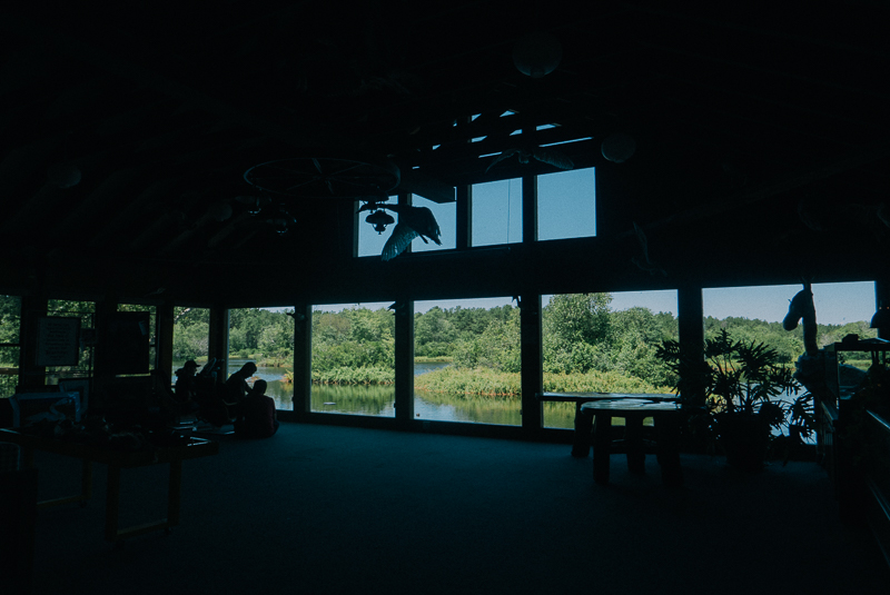 A view from the visitor's center